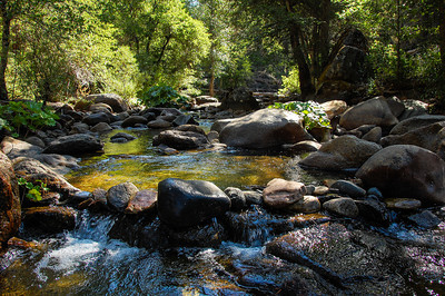 creek-rocks-trees-3