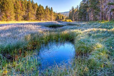 yosemite-pond-meadow-3