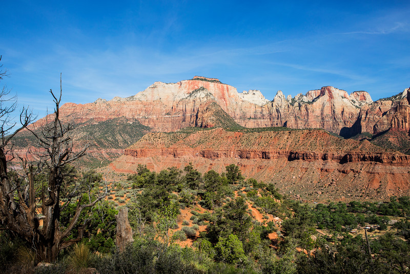 South End of Zion Canyon