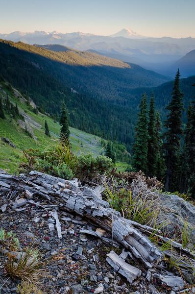 Mt Adams<br /> Mt. Rainier National Park