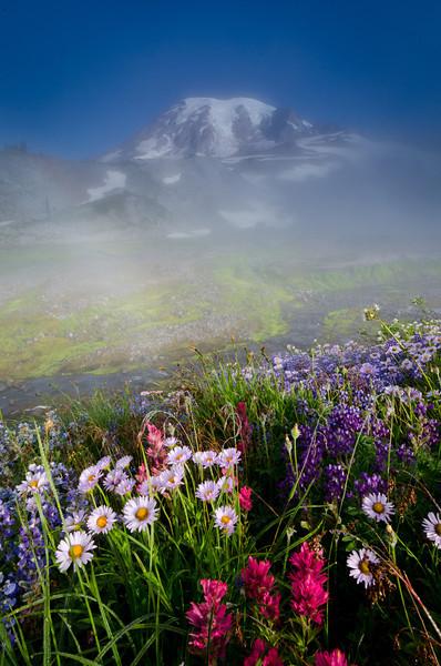 Misty Morning at Mt. Rainier