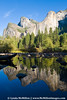 Silent Reflections; Yosemite NP