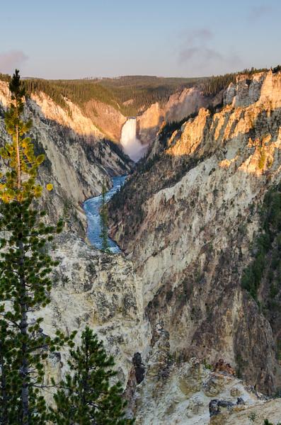 Grand Canyon of Yellowstone Sunrise