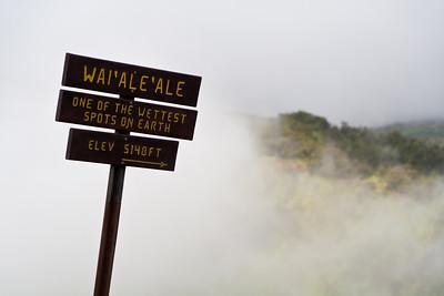 Mount Waiʻaleʻale at Koke'e State Park