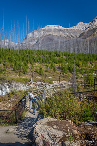 Marble Canyon, Kootenay National Park, British Columbia