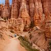 Bryce Canyon-6981x