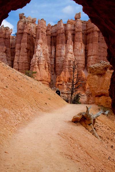Bryce Canyon-6929x