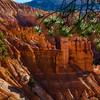 Bryce Canyon-5862x