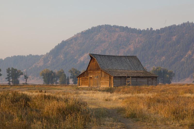 Mormon Row - Sunrise