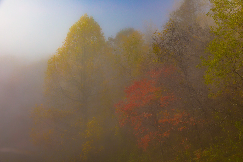 Autumn in the Misty Haze