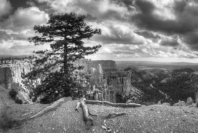 """""""Bryce in Black and White,"""" Bryce Canyon National Park, Utah."""