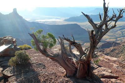 Dead Horse Point National Park, outside of Moab, Utah.