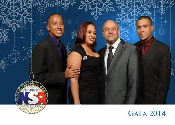 Greenscreen NSA 2014 Gala