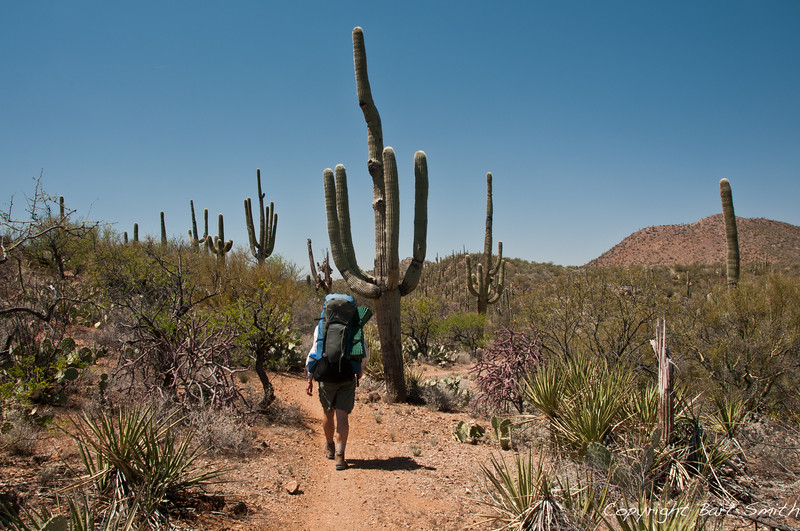 Hiker on Arizona Trail along Colossal Cave County Park.