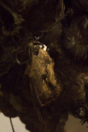 Amuletdrengen Tertaq. 80 armuletter eer fæstnet på denne inderpels, som i 1923 blev båret af en seks-syv år gammel dreng hos Netsilik-folket i Canada. Han var den mest beskyttede og kraftfyldte person i hele stammen. Dragten blev erhvervet på 5. Thule ekspedition af Knud Rasmussen.