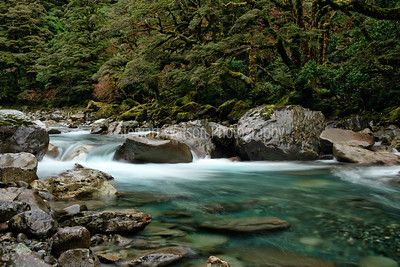 Cleddau River on route to Milford Sound