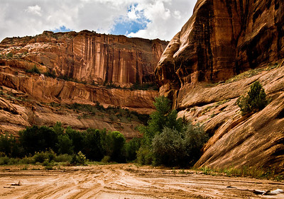 canyondechelly_3909