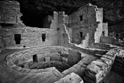 Spruce Tree House_4_09_bw
