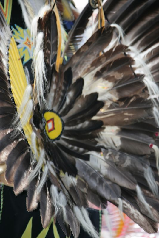 Seminole Tribal Fair - 34th Annual Event - February 2005 - 0150