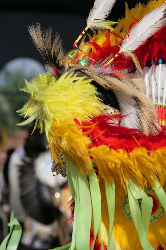 Seminole Tribal Fair - 34th Annual Event - February 2005 - 0116