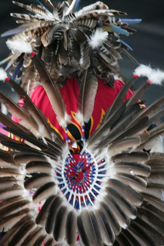 Seminole Tribal Fair - 34th Annual Event - February 2005 - 0154