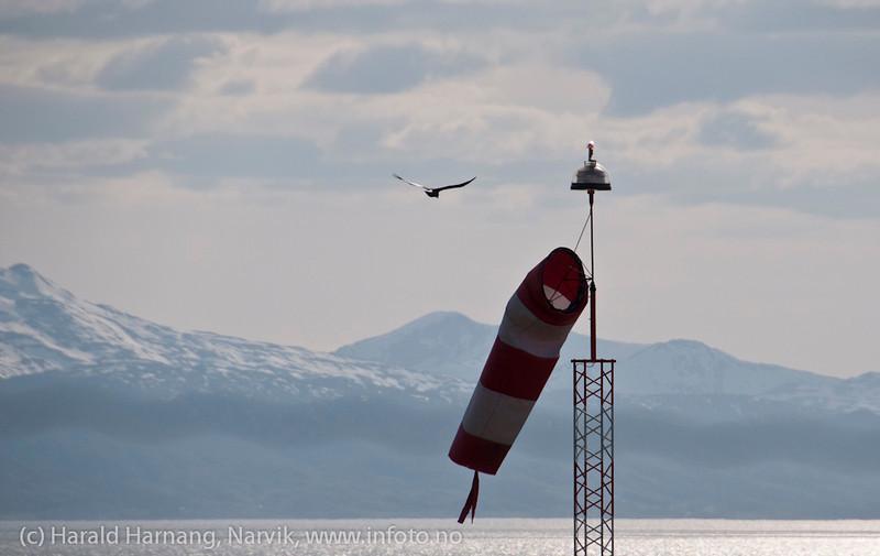 Inn for landing. Narvik lufthavn juni 2012.