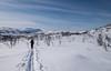 Nygårdsfjell