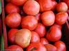 Frukt, tomater