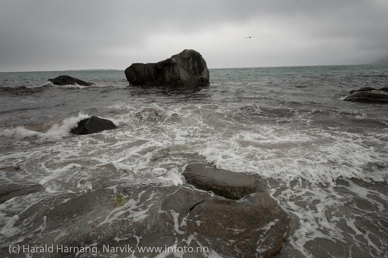 Lofoten, juni 2013: Unstad