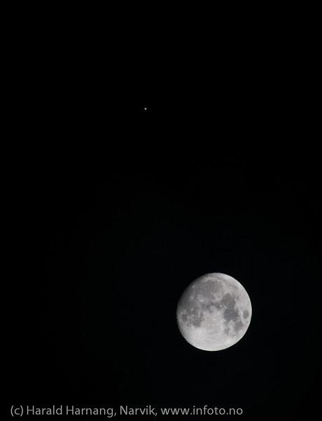 Jupiter passerer månen. Foto fra Narvik i Nord-Norge kl 24, natt mellom 25. og 26 desember 2012.<br /> The planet Jupiter passes the moon. Northern Norway, Desember 26th 2012.