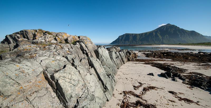 Lofoten, juni 2013. Fra en fotosafari i området Nusfjord-Ramberg.