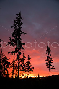 """Sister Sunset"" - Olympic Peninsula, Washington"