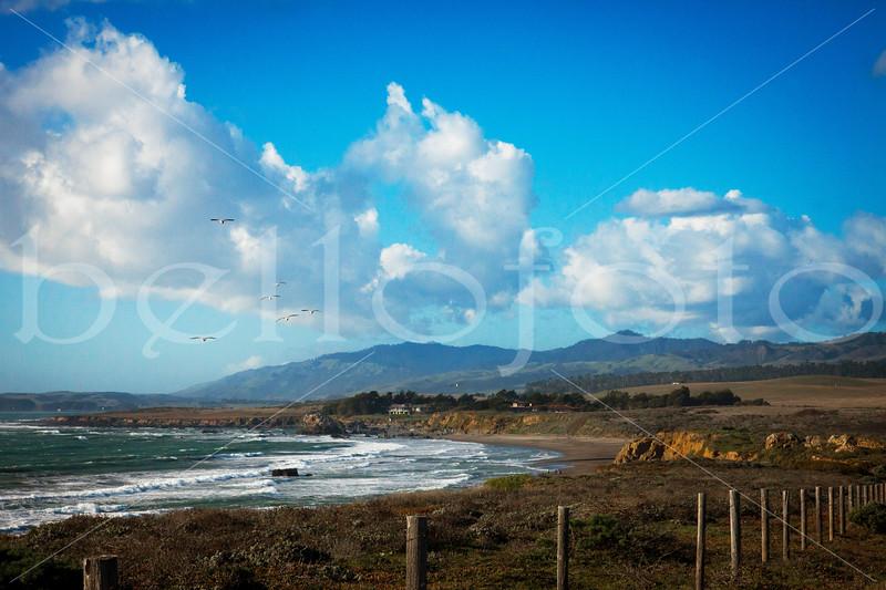 """""""San Simeon Shores"""" - San Simeon, California Coast"""