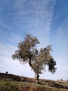 El Villar, España.