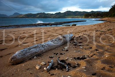 """""""Coconut Beach"""" - Kauai"""
