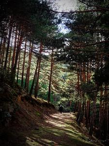 Cerca de Cascada del Hornillo, España.