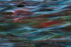 Salmon Abstract