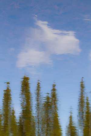 Beaver Pond Reflection on the Central Trail, Riding Mountain National Park Manitoba
