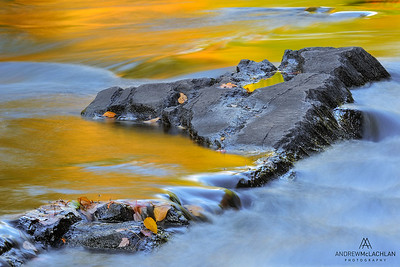 Autmn Reflections on the Oxtongue River, Muskoka, Ontario