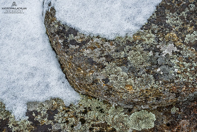 Lichen Covered Rocks and Snow, Muskoka, Ontario, Canada