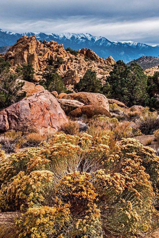 Mountain Strata - California-Nevada Border, Benton, CA