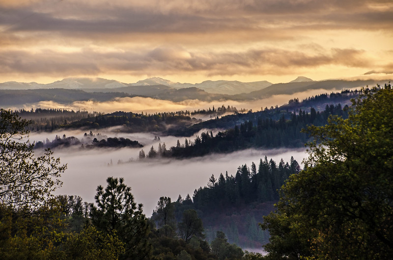Morning mists linger in the canyons of the Emigrant Gap