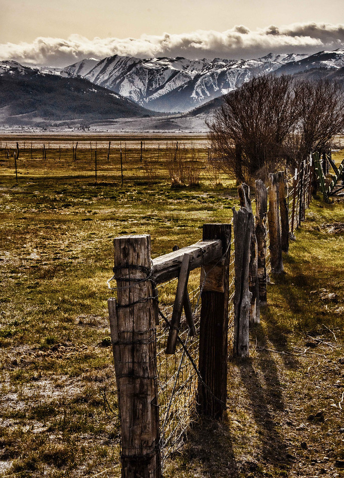Fence and Mountains, Bridgeport, CA