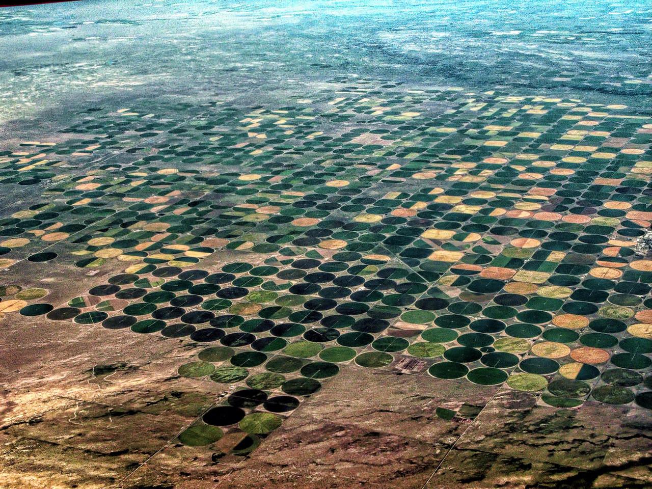 Crop Circles Checkboard