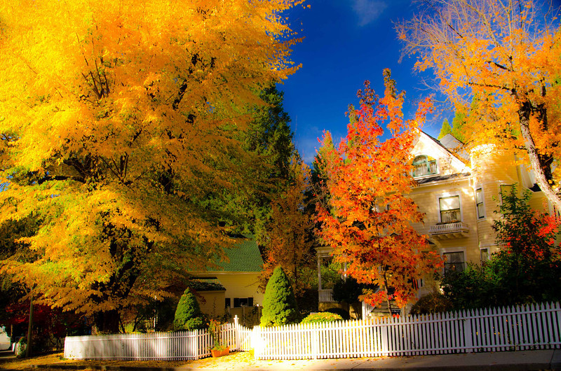 Fall Color - Nevada City, CA
