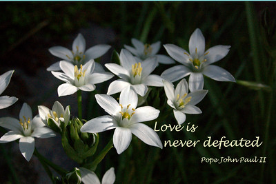 Love is never defeated