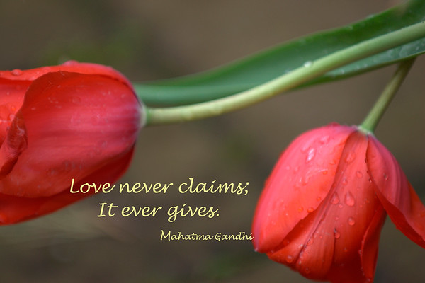 Love never claims
