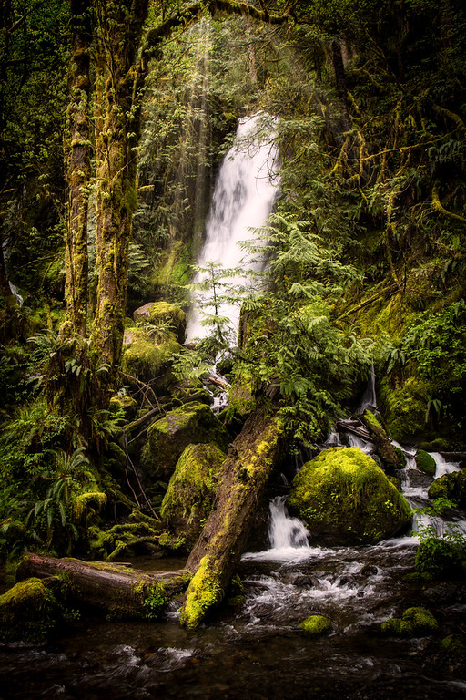 Hoh Rainforest Waterfall