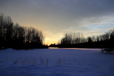Bog Sunset