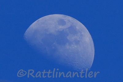 Moon032815_001